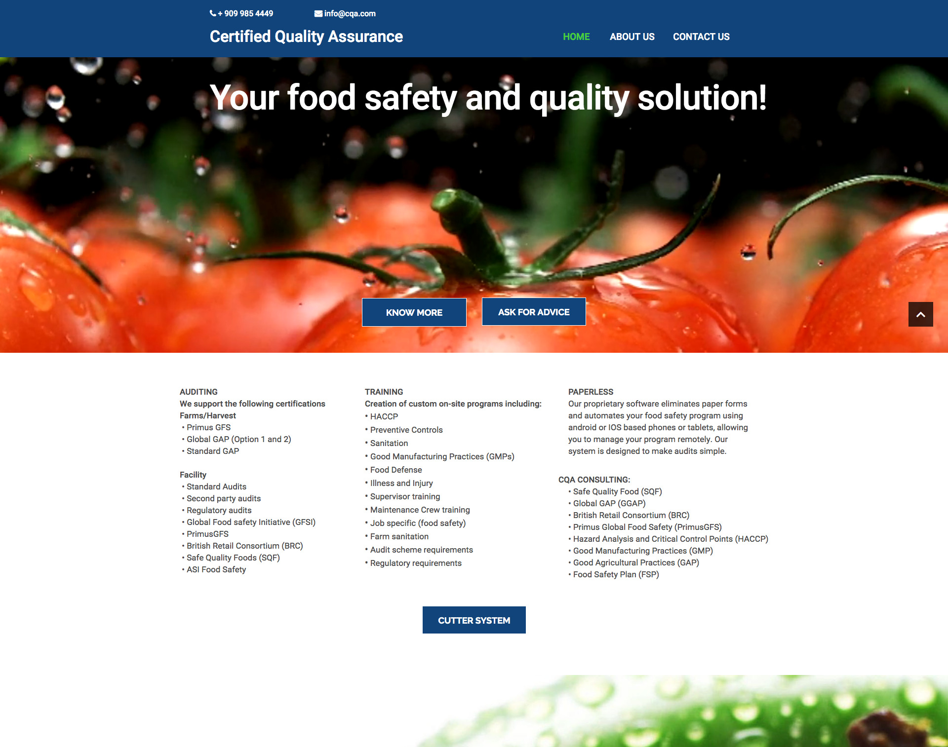 Certified Quality Assurance Website Design Website Maintenance