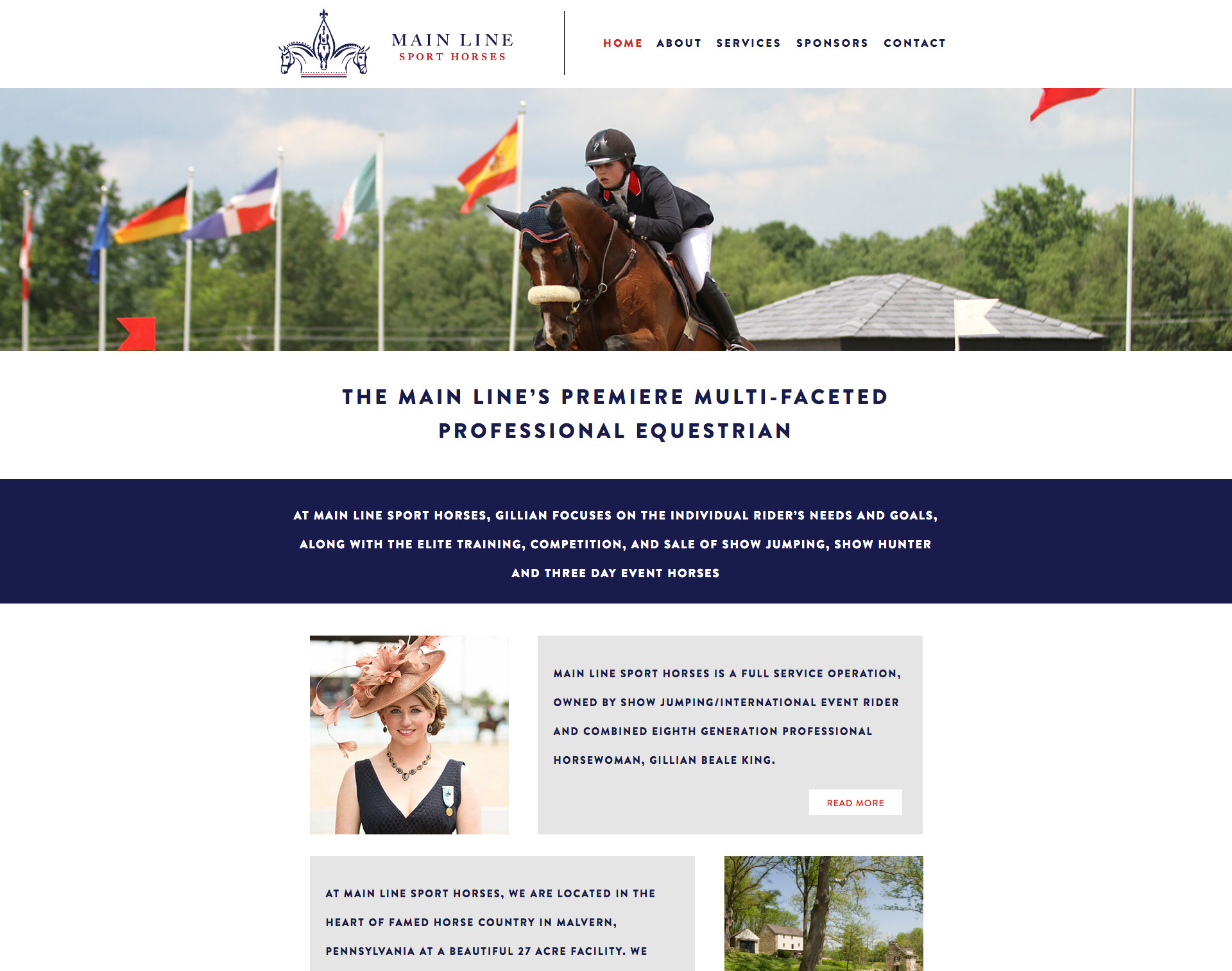 Main Line Sport Horses Website Design Website Maintenance